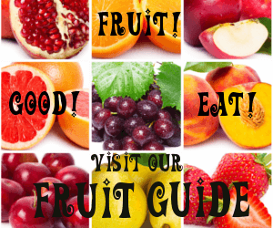 Fruit! Good! Eat! Visit our Fruit Guide
