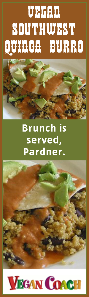 This burro makes a delicious vegan breakfast or brunch. It's stuffed to the gills with tender quinoa and hearty kidney beans, then wrapped in a tortilla and topped with a flavorful Southwestern sauce that matches perfectly with the flavors of the burro innards. Oh, yum! Join us for the easy recipe...