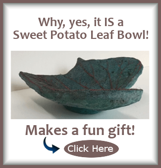 Why yes, you CAN buy this beautiful sweet potato leaf footed bowl