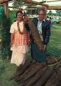 Photo of a true yam - almost as big as the man