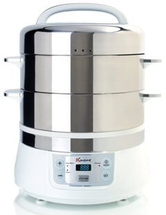 Electric countertop stainless steel steamer