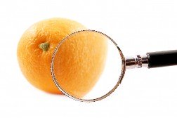 An orange with a magnifying glass zeroing in on it